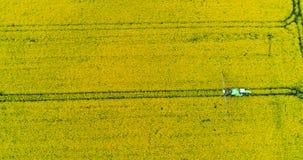 Le jet de tracteur fertilisent le gisement de graine de colza avec des produits chimiques d'herbicide d'insecticide banque de vidéos