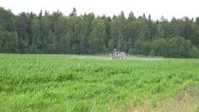 Le jet de véhicule de ferme fertilisent le gisement de maïs avec la route proche chimique 4K clips vidéos