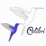 Le jeu éducatif relient des points à l'oiseau de colibri d'aspiration illustration stock