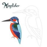 Le jeu éducatif relient l'oiseau de martin-pêcheur d'aspiration de points illustration libre de droits