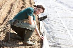 Le jeune agriculteur attirant vérifient le progrès de la culture Photographie stock libre de droits