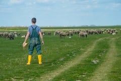 Le jeune berger Images libres de droits