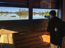Le jeune birdwatcher images libres de droits