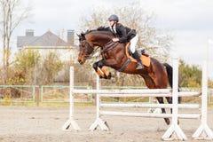 Le jeune cavalier féminin sur le cheval de baie sautent par-dessus l'obstacle Image stock