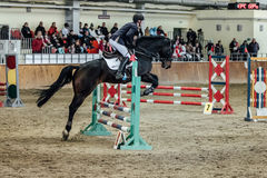 Le jeune cheval masculin de cavalier surmonte des sports d'obstacles complexes Images stock