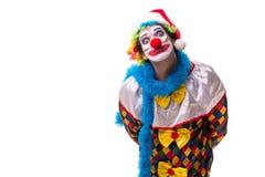 Le jeune comédien drôle de clown d'isolement sur le blanc photo stock