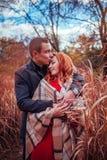 Le jeune couple étreint dans la forêt d'automne parmi la haute herbe Image libre de droits