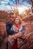 Le jeune couple étreint dans la forêt d'automne parmi la haute herbe Photos libres de droits