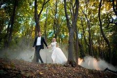 Le jeune couple de mariage va sur une forêt pittoresque Image libre de droits