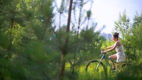 Le jeune couple faisant un cycle par le sapin s'embranche dans la forêt d'été banque de vidéos