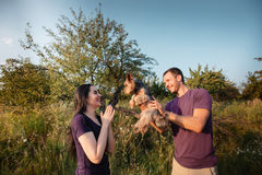Le jeune couple heureux sur la nature, le garçon donne à fille un chien - terrier de Yorkshire comme cadeau Images stock