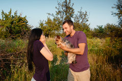 Le jeune couple heureux sur la nature, le garçon donne à fille un chien - terrier de Yorkshire comme cadeau Photo libre de droits