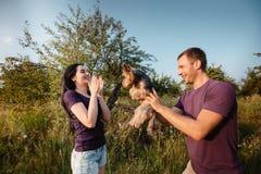 Le jeune couple heureux sur la nature, le garçon donne à fille un chien - terrier de Yorkshire comme cadeau Image libre de droits