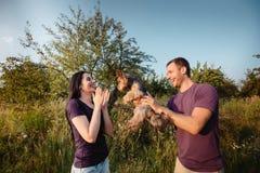 Le jeune couple heureux sur la nature, le garçon donne à fille un chien - terrier de Yorkshire comme cadeau Photo stock