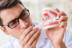 Le jeune dentiste travaillant dans l'hôpital d'art dentaire image libre de droits