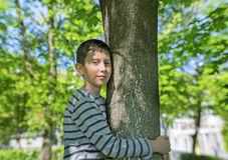 Le jeune garçon étreint un arbre Photo stock