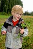 Le jeune garçon dans la veste sale sélectionne des fleurs pour sa mère Images stock