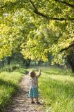 Le jeune garçon a rempli de merveille tout en faisant une promenade photos stock