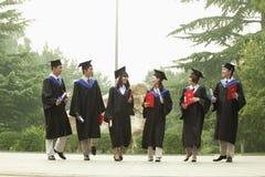 Le jeune groupe de l'université reçoit un diplôme avec des diplômes à disposition regardant l'un l'autre photographie stock
