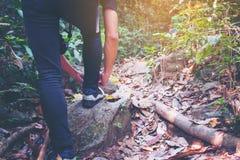 Le jeune homme de hippie remet attacher des dentelles de chaussure sur la rue dans la forêt, SH Image stock