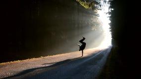 Le jeune homme saute en main sur le chemin au soleil banque de vidéos