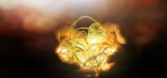 Le jeune homme tenant des coeurs a formé des lumières de ficelles à disposition photo stock