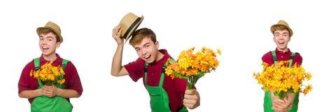 Le jeune jardinier avec la fleur d'isolement sur le blanc images libres de droits