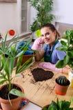 Le jeune jardinier f?minin avec des usines ? l'int?rieur photo libre de droits
