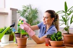 Le jeune jardinier f?minin avec des usines ? l'int?rieur photos libres de droits