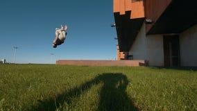 Le jeune mâle acrobatique exécute une secousse sur l'herbe verte au soleil banque de vidéos