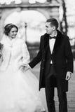 Le jeune marié tient la main de la jeune mariée pendant la promenade en parc Photo libre de droits