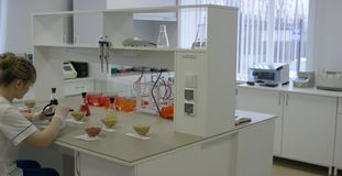 Le jeune scientifique travaille dans le laboratoire biologique moderne Un docteur médical ou scientifique féminin de chercheur ou banque de vidéos