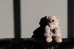Le jouet femelle mignon de poupée d'ours de nounours se repose sur le vieux sofa de vintage Photographie stock libre de droits