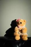 Le jouet femelle mignon de poupée d'ours de nounours se repose sur le vieux sofa de vintage Image stock