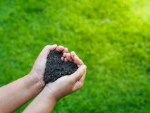 Le jour d'Eart, sauvent la terre, concept d'amour la main de femme tenant a Images libres de droits