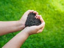 Le jour d'Eart, sauvent la terre, concept d'amour la main de femme tenant a Photos libres de droits