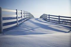 Le jour d'hiver Photo libre de droits