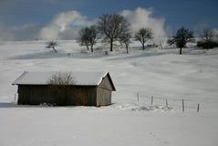 Le jour d'hiver lumineux Photo stock