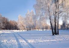Le jour de l'hiver Photo stock