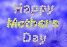 Le jour de mère heureux Photographie stock libre de droits