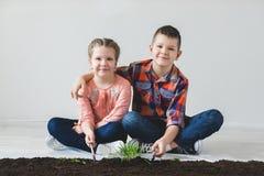 Le jour de terre et le frère et la soeur sont usine jetée Image libre de droits