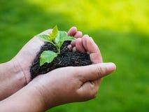 Le jour de terre, sauvent la terre, concept d'amour l'exploitation de main de femme Photo stock
