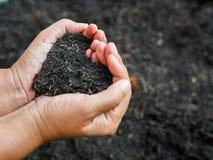 Le jour de terre, sauvent la terre, concept d'amour la main de femme tenant a Images libres de droits