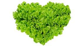 Le jour de terre, symbole de coeur en vert part sur d'isolement Photo stock