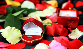 Le jour de Valentine Photo libre de droits