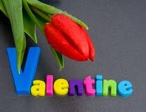 Le jour de Valentine de saint. Photo libre de droits