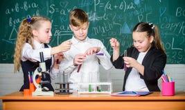 Le jour des enfants chimie De nouveau à l'école étudiants faisant des expériences de biologie avec le microscope Peu badine l'étu photo libre de droits