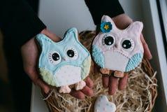 Le jour du ` s de Valentine a coloré des biscuits dans des mains femelles Photographie stock libre de droits