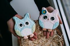 Le jour du ` s de Valentine a coloré des biscuits dans des mains femelles Image stock