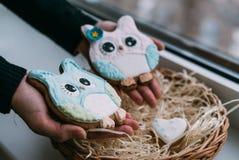 Le jour du ` s de Valentine a coloré des biscuits dans des mains femelles Image libre de droits